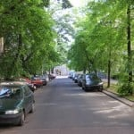 Image - Cars parked along tree-lined street in shady neighborhood.
