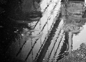 Image of a wet road during a rain